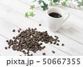 コーヒー豆 50667355