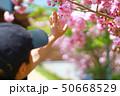 花びらを触る子供 50668529