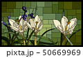 Mosaic with blooming white crocuses. 50669969