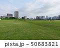 運動場 道 草の写真 50683821