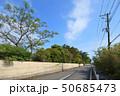 東京オリンピックサーフィン会場の千葉県一宮町 50685473