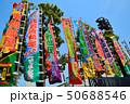 両国国技館(大相撲) 50688546