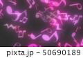 50690189