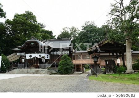 須賀神社(小山市) 50690682