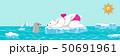 シロクマとアザラシ 夏 北極海 横長 50691961