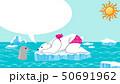 シロクマとアザラシ 夏 北極海 50691962