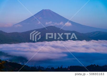 (神奈川県)箱根大観山から望む、雲海の芦ノ湖と富士山 夜明け 50693163
