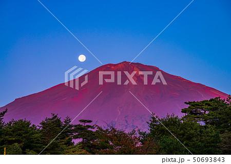 (静岡県)赤富士 落月 秋 50693843