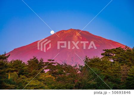(静岡県)赤富士 落月 秋 50693846