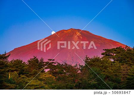 (静岡県)赤富士 落月 秋 50693847