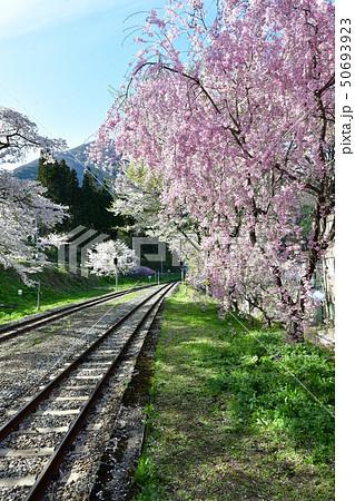 春の湯野上温泉 50693923