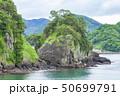 伊豆半島ジオパーク、弁天島の海底火山噴火の痕跡、静岡県松崎町にて 50699791