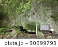 伊豆半島ジオパーク、弁天島の海底火山噴火の痕跡、静岡県松崎町にて 50699793