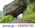 伊豆半島ジオパーク、弁天島の海底火山噴火の痕跡、静岡県松崎町にて 50699795