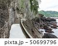 伊豆半島ジオパーク、弁天島の海底火山噴火の痕跡、静岡県松崎町にて 50699796