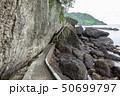 伊豆半島ジオパーク、弁天島の海底火山噴火の痕跡、静岡県松崎町にて 50699797