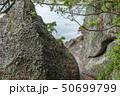 伊豆半島ジオパーク、弁天島の海底火山噴火の痕跡、静岡県松崎町にて 50699799