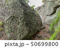 伊豆半島ジオパーク、弁天島の海底火山噴火の痕跡、静岡県松崎町にて 50699800