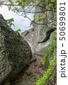 伊豆半島ジオパーク、弁天島の海底火山噴火の痕跡、静岡県松崎町にて 50699801