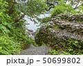 伊豆半島ジオパーク、弁天島の海底火山噴火の痕跡、静岡県松崎町にて 50699802