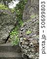 伊豆半島ジオパーク、弁天島の海底火山噴火の痕跡、静岡県松崎町にて 50699803