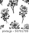 Watercolor chinese rose pattern 50701799