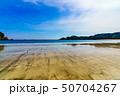 風景 南伊豆 海岸の写真 50704267