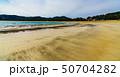 風景 南伊豆 海岸の写真 50704282