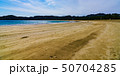 風景 南伊豆 海岸の写真 50704285