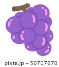 フルーツ 果物 葡萄のイラスト 50707670