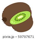 キウイ キウイフルーツ 果物のイラスト 50707671