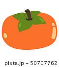 柿 フルーツ 果物のイラスト 50707762