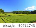 茶畑(初夏) 50711743
