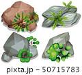 植物 ストーン 石のイラスト 50715783
