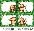 Set of monkeys in nature frames 50716532