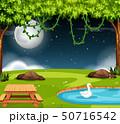 A park scene at night 50716542