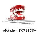 Tooth human implant. Dental concept 3d illustration 50716760