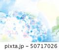 アジサイの美しいイラスト 50717026