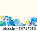 アジサイの美しいイラスト 50717030