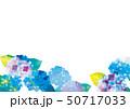 アジサイの美しいイラスト 50717033