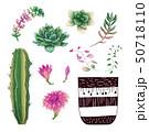 さぼてん サボテン 仙人掌のイラスト 50718110