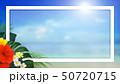 夏 南国 海のイラスト 50720715