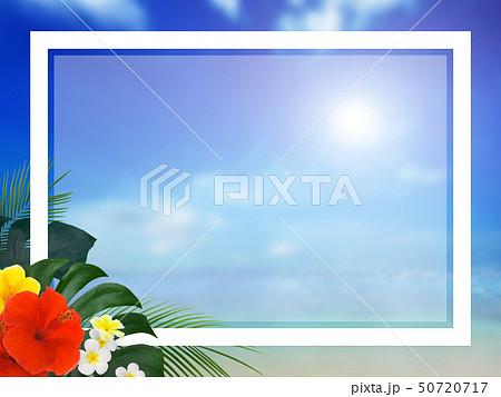背景-南国-海-空-夏-ビーチ-ハイビスカス-フレーム 50720717