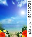 背景-南国-海-空-夏-ビーチ-ハイビスカス 50720724