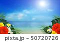 背景-南国-海-空-夏-ビーチ-ハイビスカス 50720726