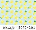 パターン レモン 檸檬のイラスト 50724201