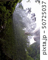 神川大滝公園の小滝の裏(鹿児島県肝属郡錦江町) 50725037