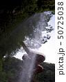 神川大滝公園の小滝の裏(鹿児島県肝属郡錦江町) 50725038