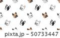 フレブル フレンチブルドック フレンチブルドッグのイラスト 50733447