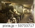 伊豆半島ジオパーク、室岩洞の石切り場跡、静岡県松崎町にて 50733717